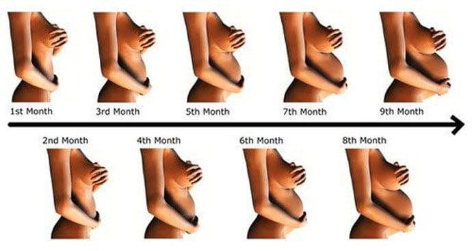 Trzeci trymestr ciąży – 10 miesiąc księżycowy – 37-40 tydzień