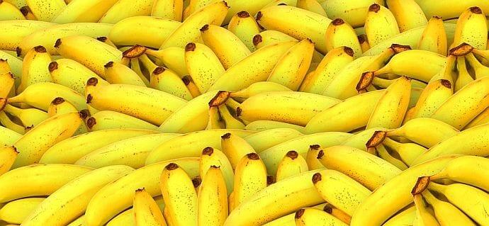 Banan w plecaku – czyli odżywianie dzieci i młodzieży