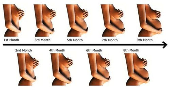 Trzeci trymestr ciąży – 7 miesiąc księżycowy – 25-28 tydzień