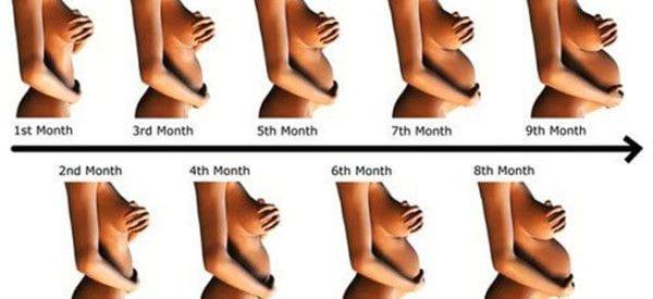 Pierwszy trymestr ciąży - 1 miesiąc księżycowy - 1-4 tydzień