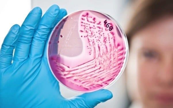 Bakterie wokół nas  –  sprawdzaj, co Twoje dziecko wkłada do buzi!