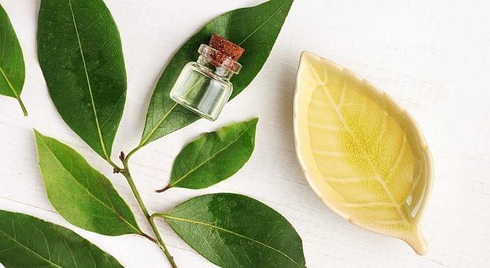 Wegańskie kosmetyki tych składników w sobie nie mają