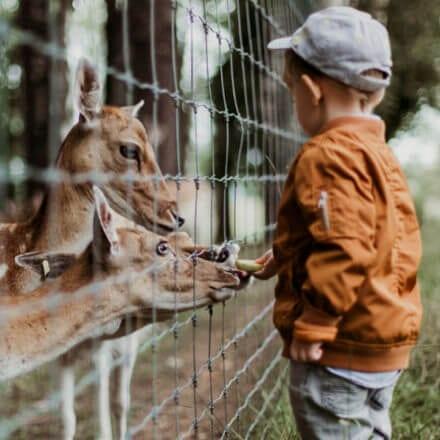 Top 10 pomysłów na aktywności z dzieckiem